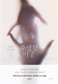 Korean《The Transparent Labyrinth》